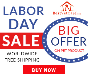 Celebrate Labor Day with End of Season Specials! Free Shipping + 12% Off. Use Coupon: LDBVC12